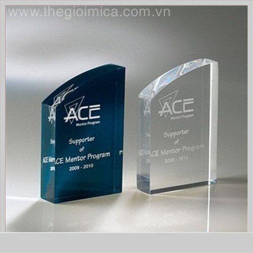 Transparent acrylic trophy with logoftSkü&qØ